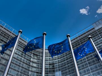 EU Members Back Anti-Dumping Duties